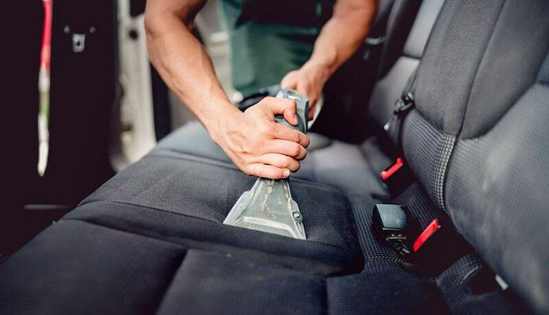 How to Get Rid of Ants in a Car?
